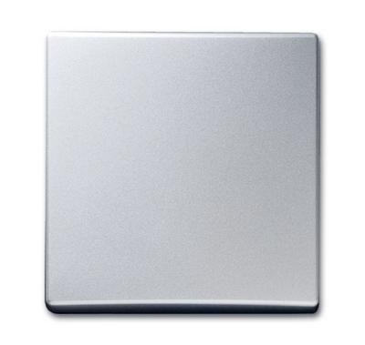 busch jaeger 2106 33 allwetter44 lichtschalter lichttaster. Black Bedroom Furniture Sets. Home Design Ideas